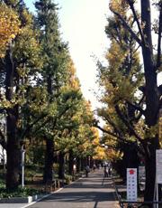 慶応大学日吉校舎入口